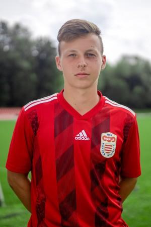 Michal Studený